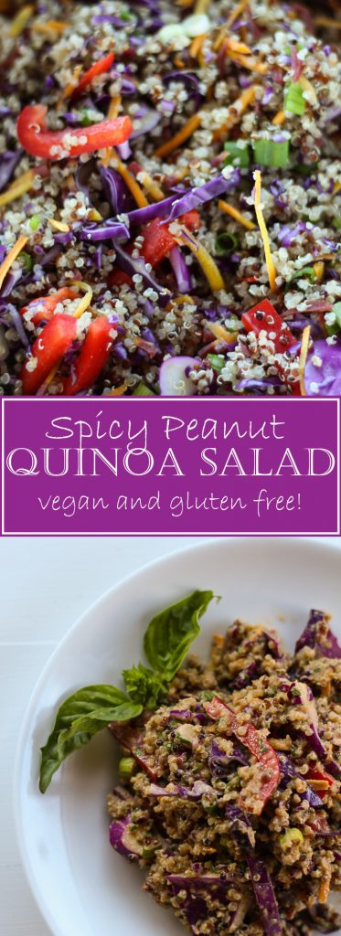 This Spicy Peanut Quinoa Salad is vegan and gluten free. Awesome to make ahead and bring to a party.