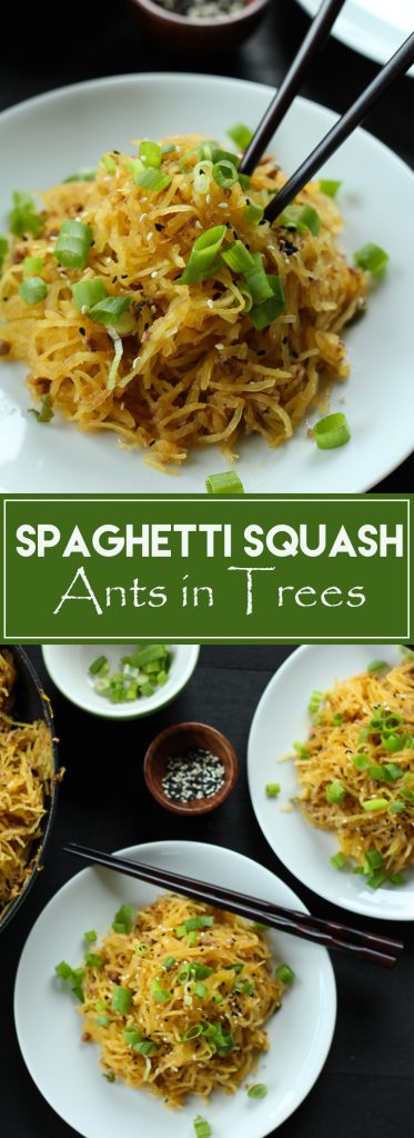 This soo healthy and soo good! It uses spaghetti squash instead of noodles and is super quick and easy to make. Great weeknight meal! Gluten free and low carb.