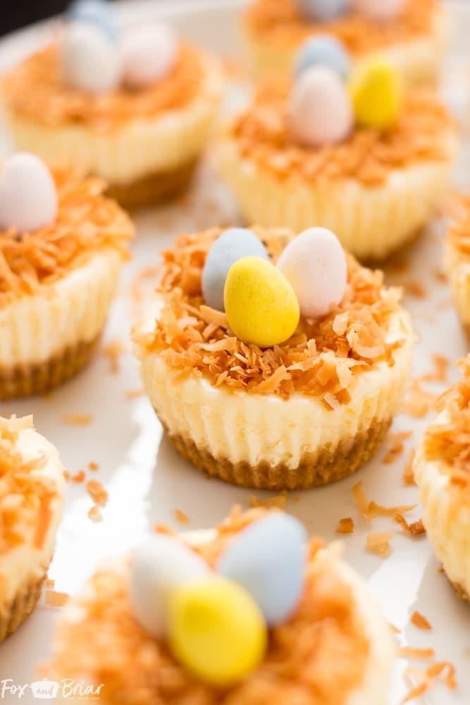 Easter Birds Nest Mini Cheesecakes | Easter Dessert | Cute Dessert | Mini Cheesecakes |mini eggs