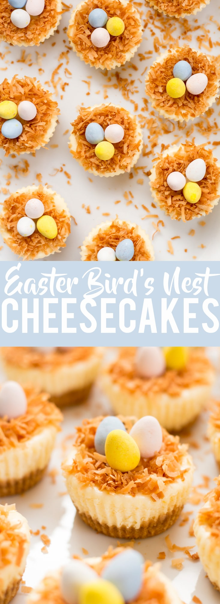 Easter Birds Nest Mini Cheesecakes | Easter Dessert | Cute Dessert | Mini Cheesecakes |mini eggs